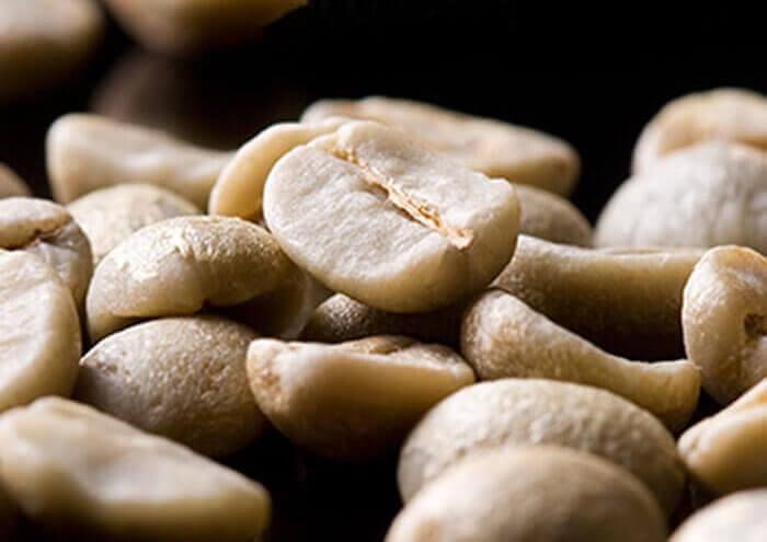 دانه قهوه خام عربیکا