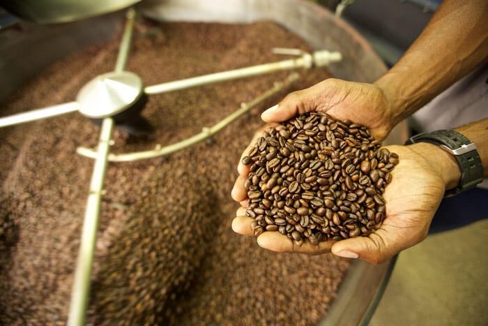 پودر و دانه قهوه تازه