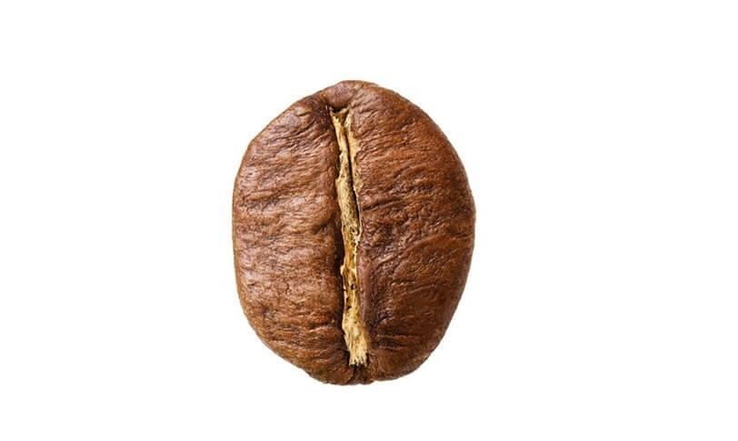قهوه robusta چیست؟