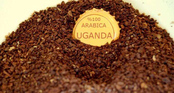 قهوه اوگاندا تازه برشت ملایم