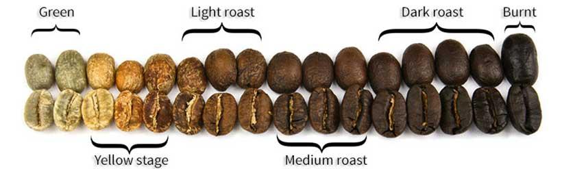 پروفایل های رست قهوه متدوال